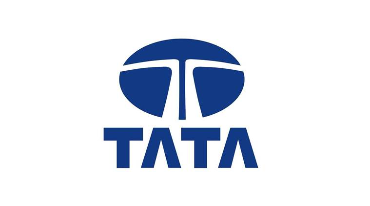 tata company The tata group consists of companies in seven sectors the seven sectors include engineering, materials, energy, chemicals, consumer products, services, and communications and it.