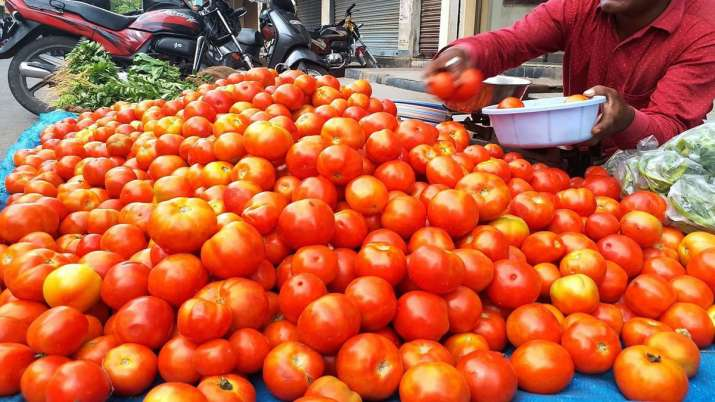 Agriculture marketing dept to participate in bidding & purchase of tomatoes from tomorrow