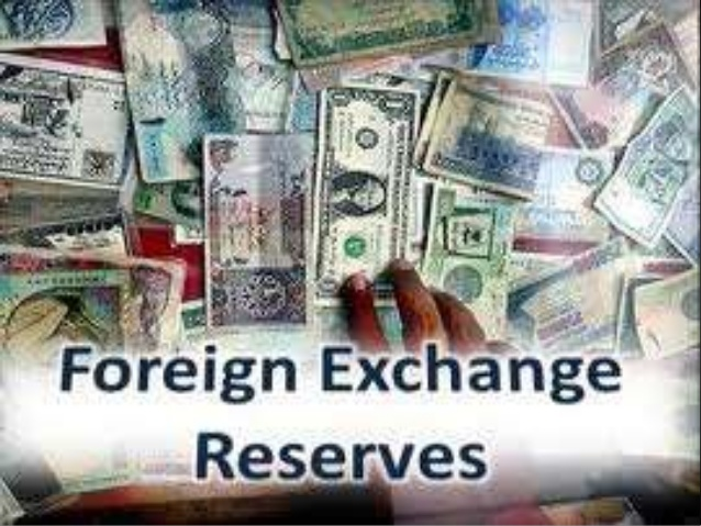Forex reserves at record high of USD 389.059 billion