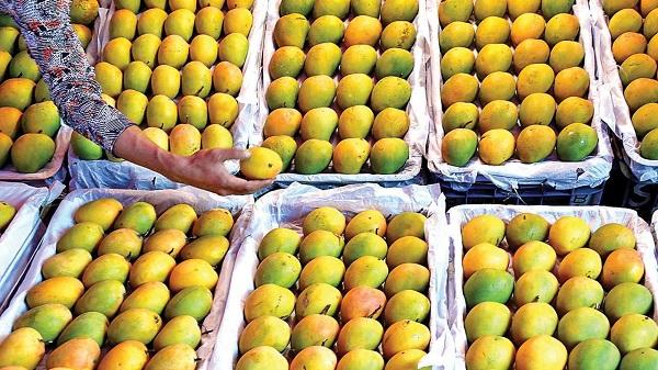 Mangoes make way for other fruits at Kothapet market Hyderabad: