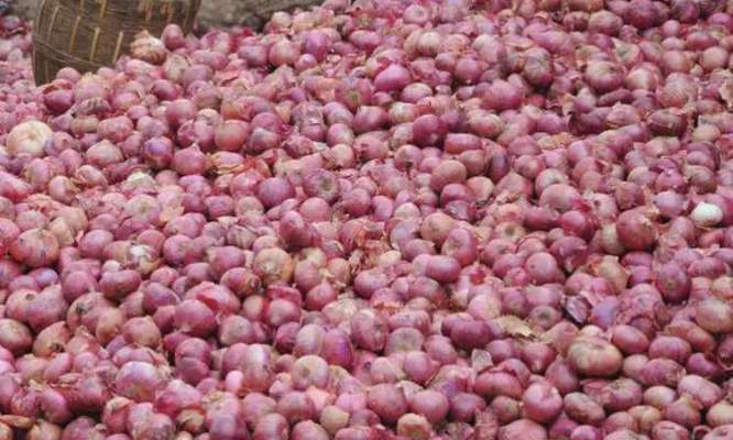 Govt relaxes fumigation condition for imported onions till Nov 30