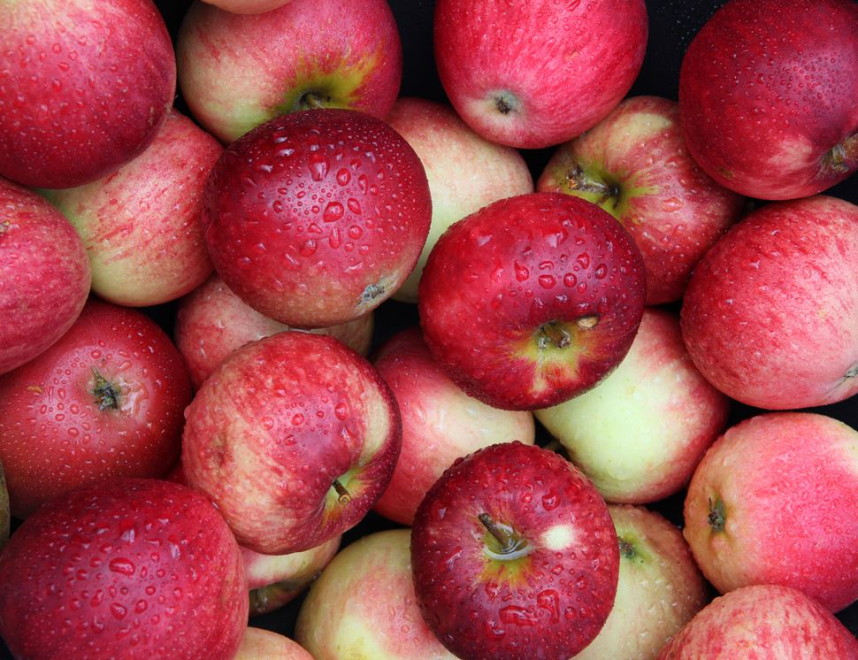 10.78 lakh MT of apples transported out of J&K: Govt
