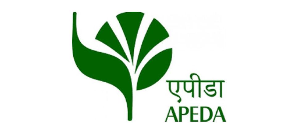 indiaexportsfirstconsignmentofjackfruittoaustralia
