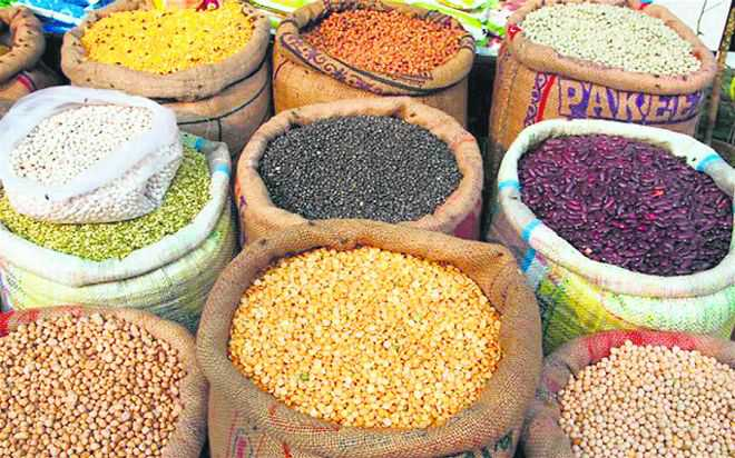 Govt exempts importers of pulses from stock limits