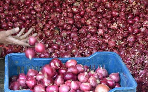 Govt further reduces stock limit of onion for retailers to check hoarding