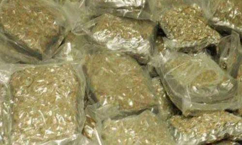 Ganja worth Rs.,9.57 lakh seized in Thane
