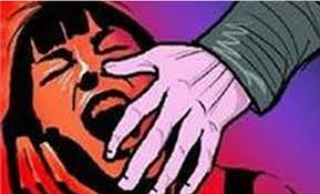 Another 6 yr old sexually assualted in Bangalore