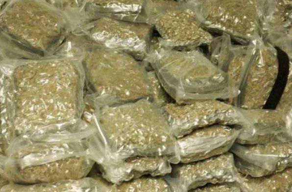 Man arrested with 35 kilograms ganja in Uttar Pradesh