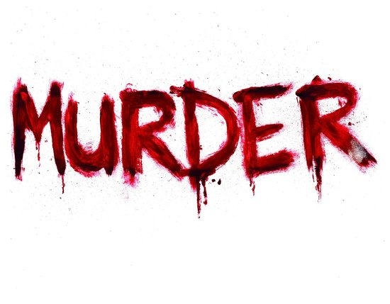28-yr old son murdered his mother