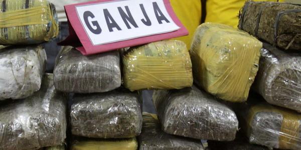 Ganja seized in Gujarat