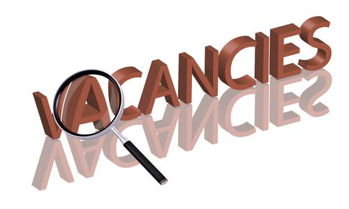 Apply for the post of Deputy Director, Assistant Director, Publication Officer