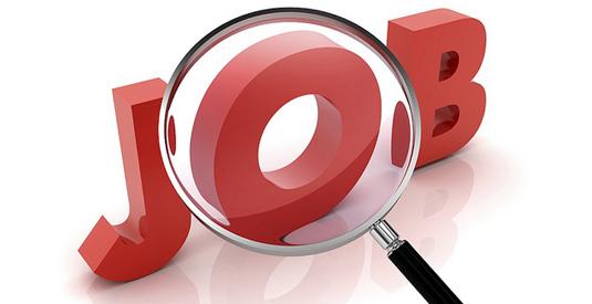 Job for Junior Hindi Translator in ISRO, Sriharikota
