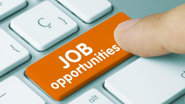 IBPS needs 1,163 specialist officers