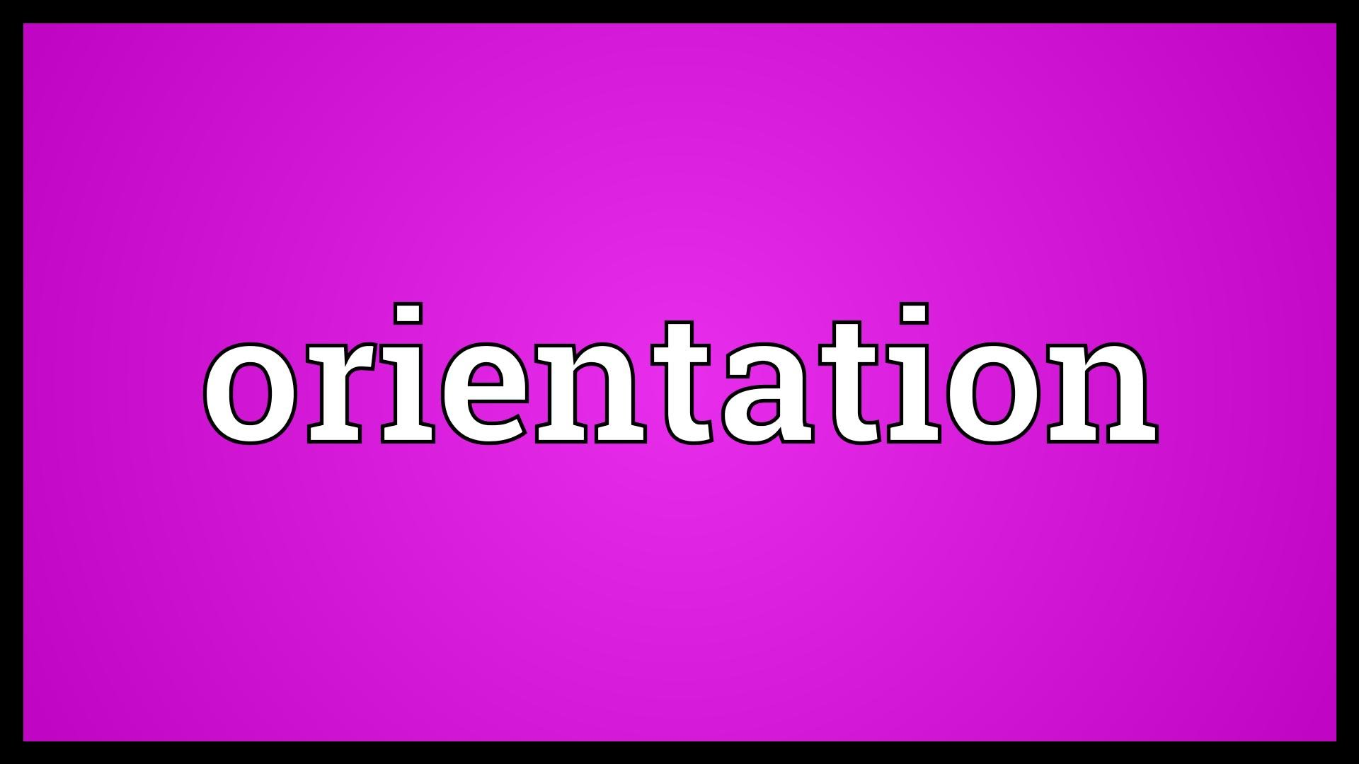 TREIS orientation for inter teachers