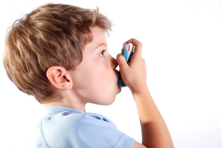 Eating fish reduces childhood asthma: study