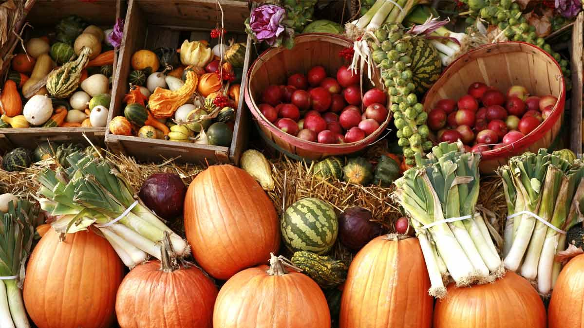 organicfoodscouldhelppreventcancer:study