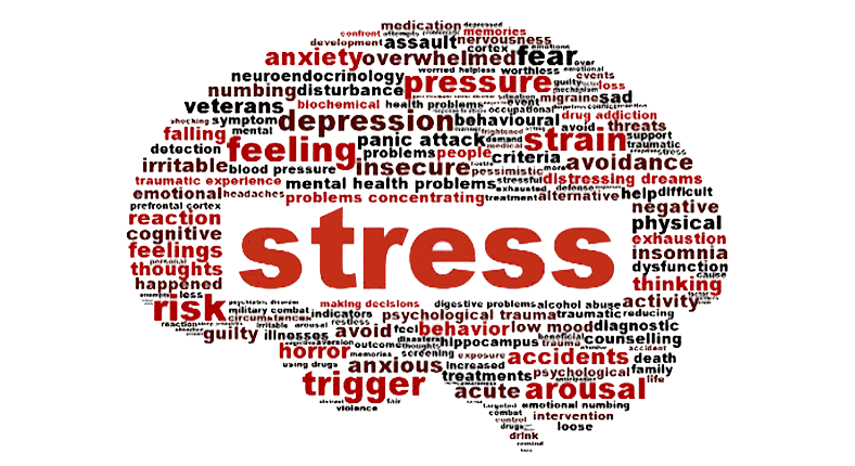 Stress in infancy alters body