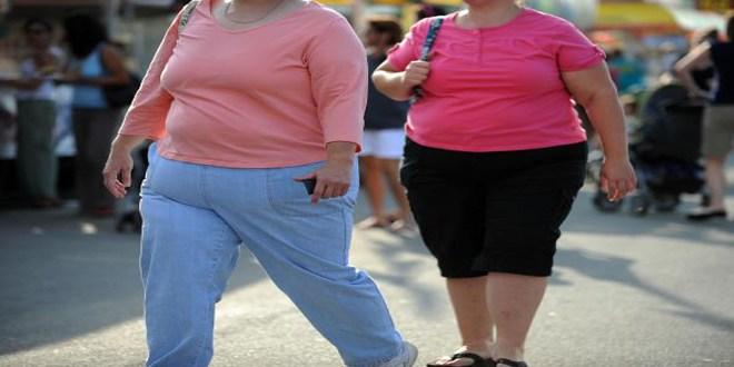 obesewomenusingoralcontraceptivesatstrokerisk