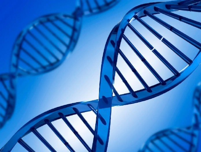 newgeneticimmunedisorderidentified