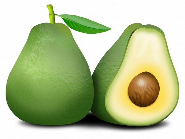 Avocado helps in dietary changes for obese people: Study