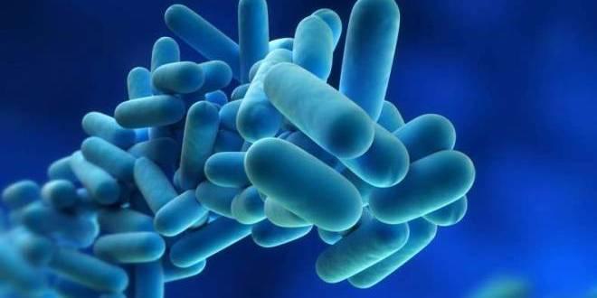 Good bacteria may help prevent pneumonia