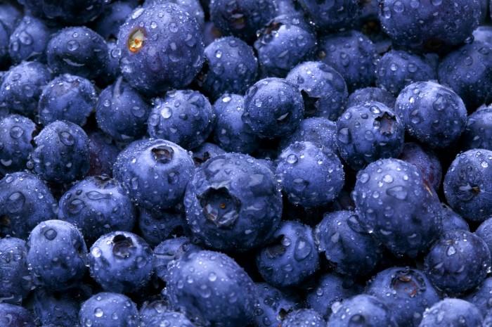 blueberriesmayhelpbeatalzheimers:study