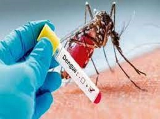 Indore reports 17 new dengue cases in a day, total cases reach 139 in Madhya Pradesh:
