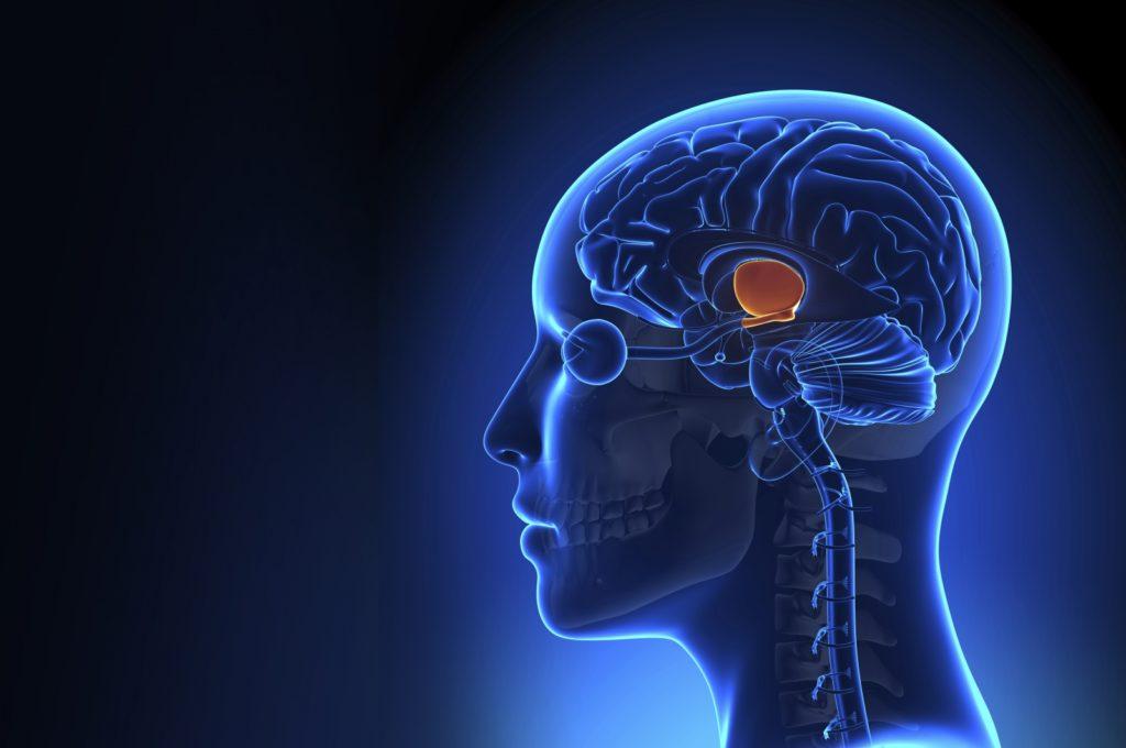 Neurodevelopment disorder risk high for men: study