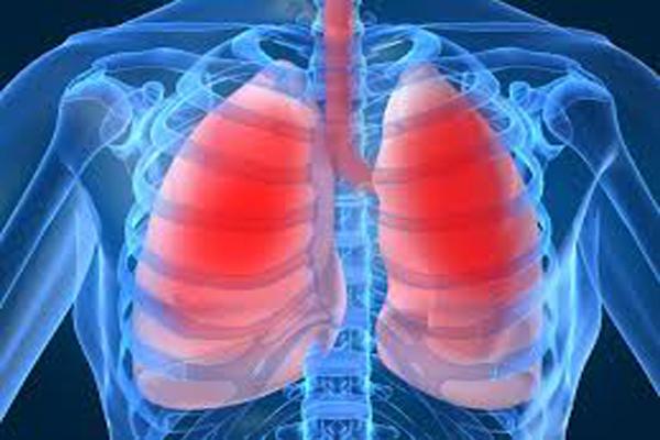 highlevelsofinsulinaffectlungs:study