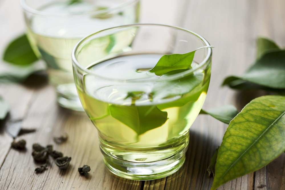 Improve gut health with green tea: Study
