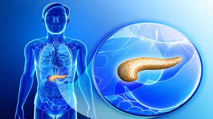 firstartificialpancreasapprovedinus