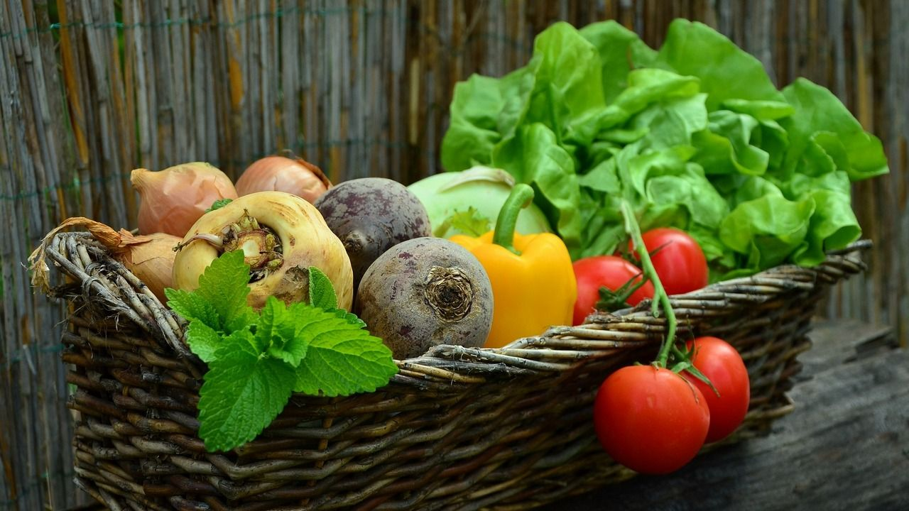 Reduce risk of heart disease with healthy diet: Study