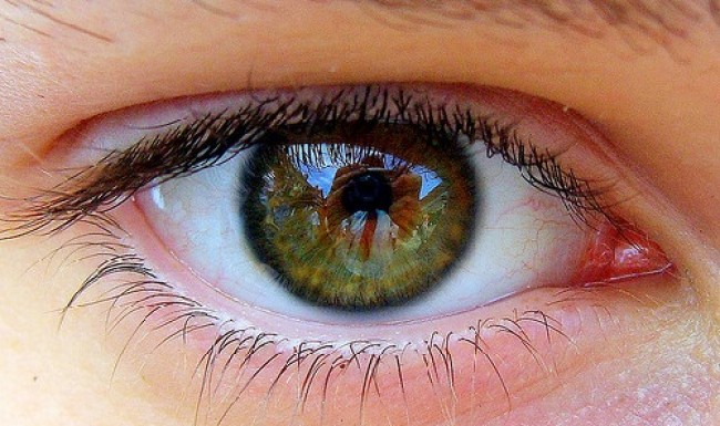 Three genes linked to Glaucoma identified