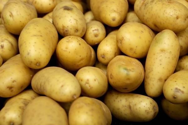 eatingpotatoesfourtimesaweekmayuphighbprisk