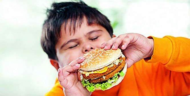 Junk food may shrink your brain: Study