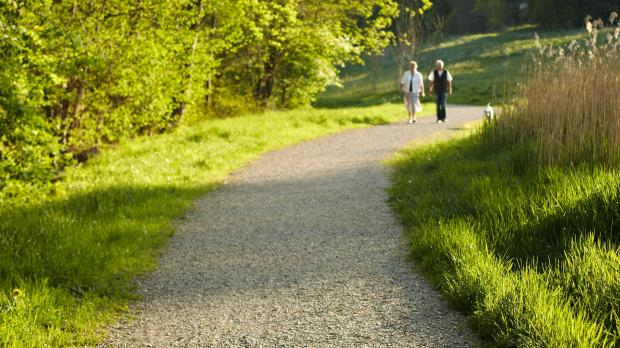 20-minute walk can cut heart failure risk