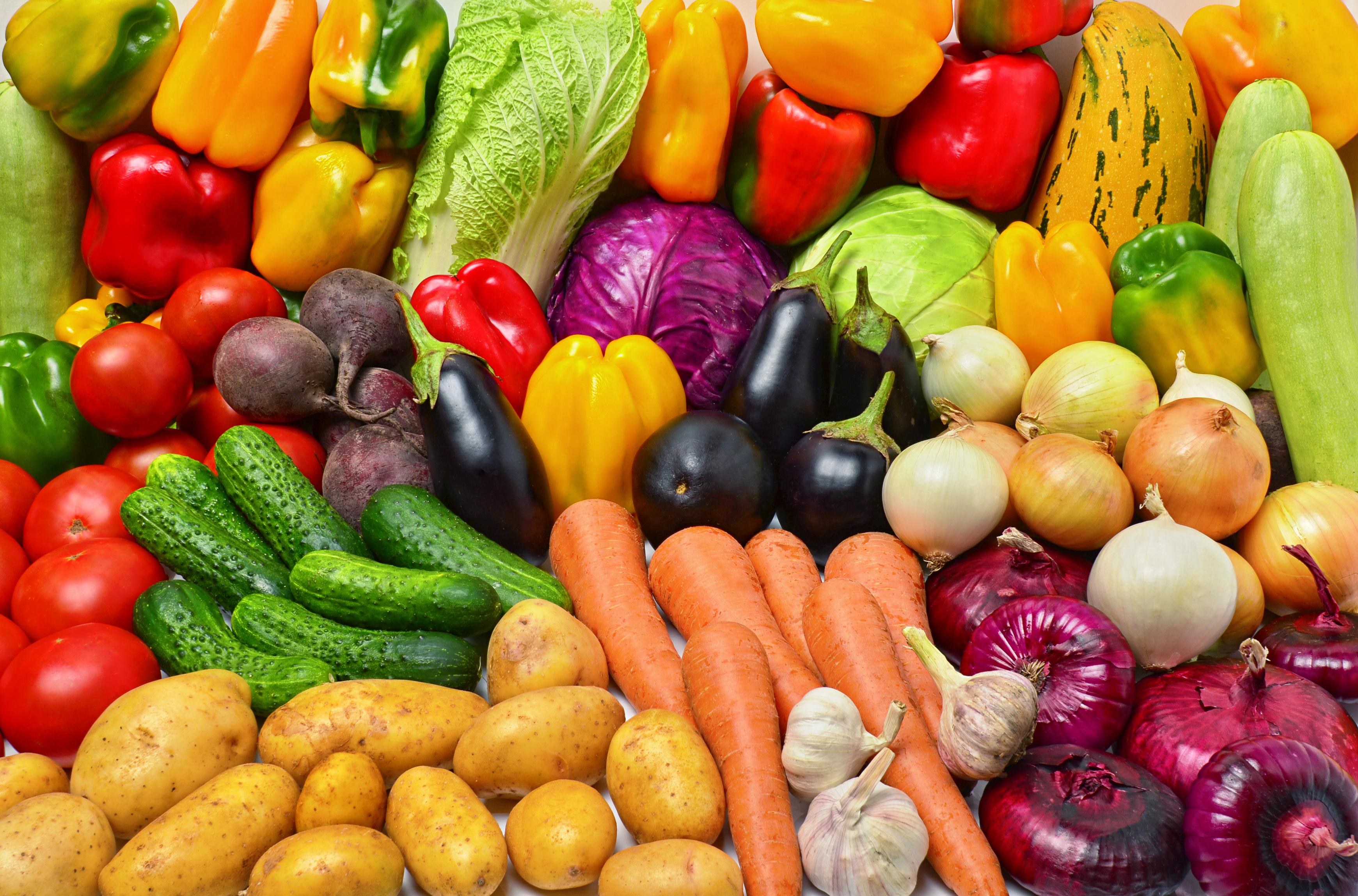 vegetariandietmoreharmfultoenvironment:study