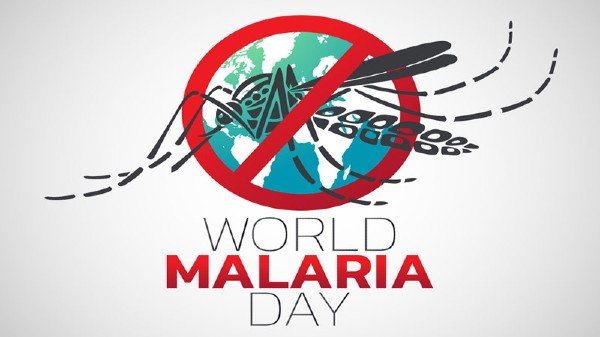 World Malaria Day is being observed today