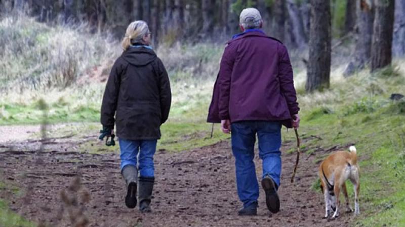 walkingmayreducemortalityrisk:study