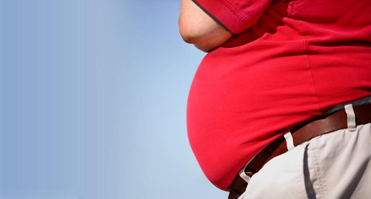 Tiny fat-burning molecule may help fight obesity