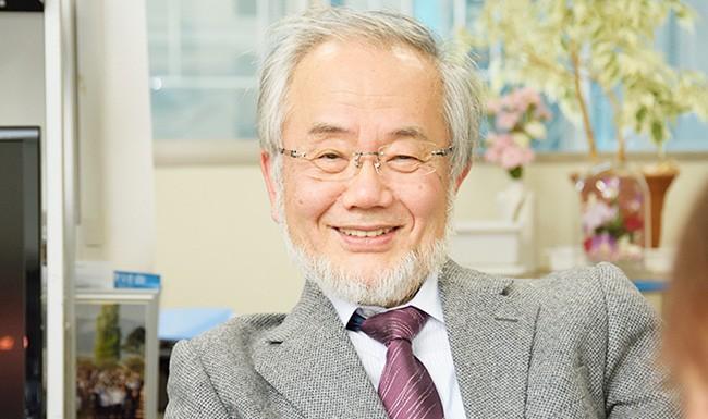 japanesescientistyoshinoriohsumiwonnobelprizeformedicalresearchoncells