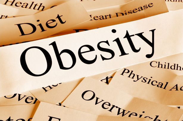 Healthy fat cells uncouple obesity from diabetes: Study