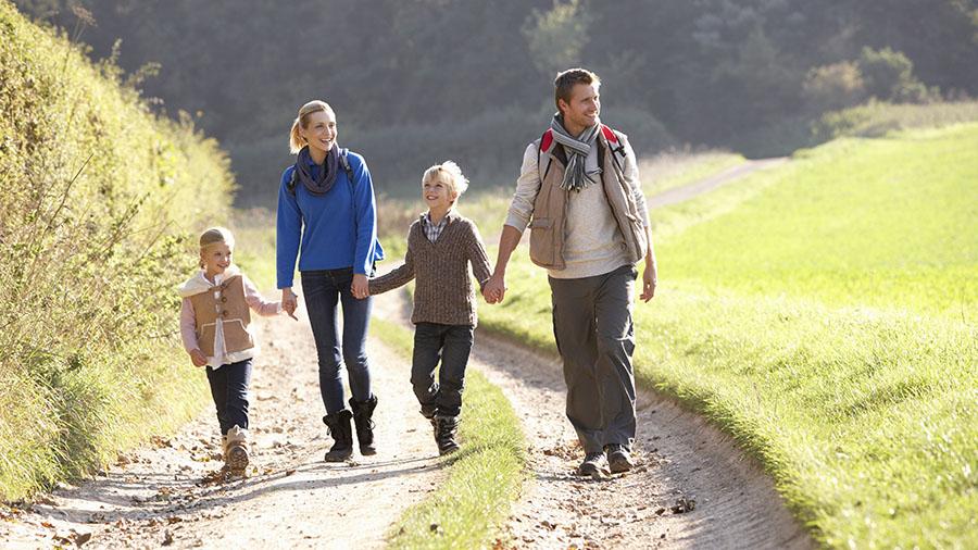 walking-regularly-can-help-improve-brain-function-study