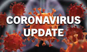 indialogs47092newcoronaviruscases