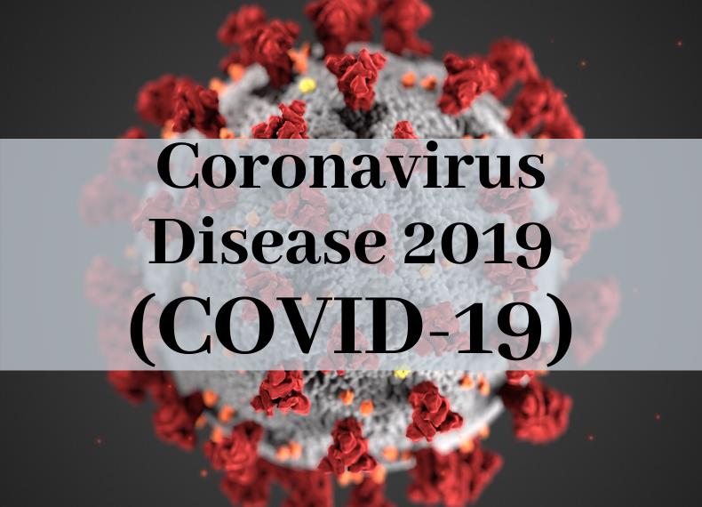 coronaviruscasesinindiariseto724;deathtollat17
