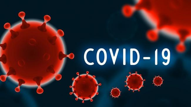 COVID-19: India records 15,223 new cases