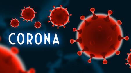 12,712 new coronavirus cases, 344 deaths in Maharashtra
