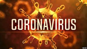 telanganarecords453newcoronaviruscases