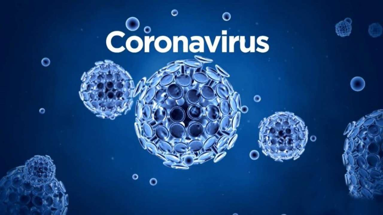 Coronavirus positive cases in Maharashtra rises to 203