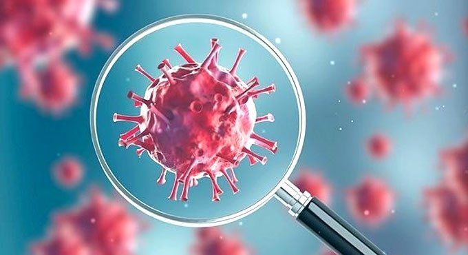 COVID-19 confirmed cases in Andhra Pradesh rises to 303